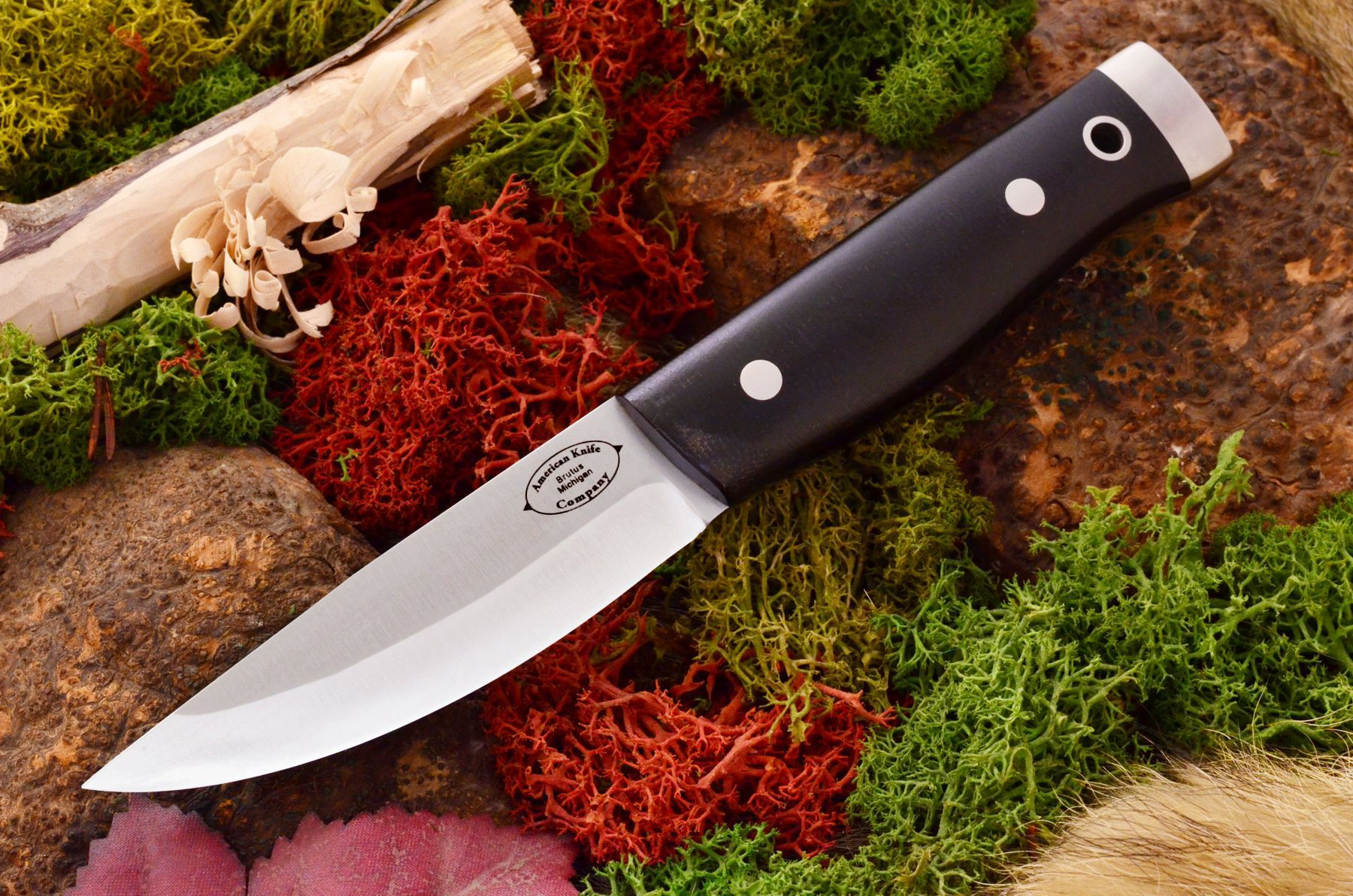 akc forest compact black canvas micarta matte 309.95