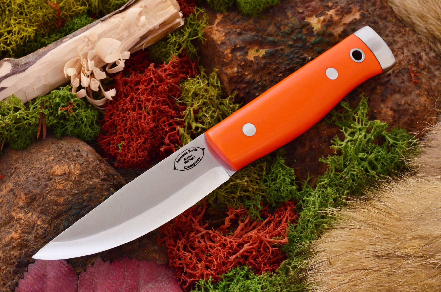 akc forest compact blaze orange g10 329.95