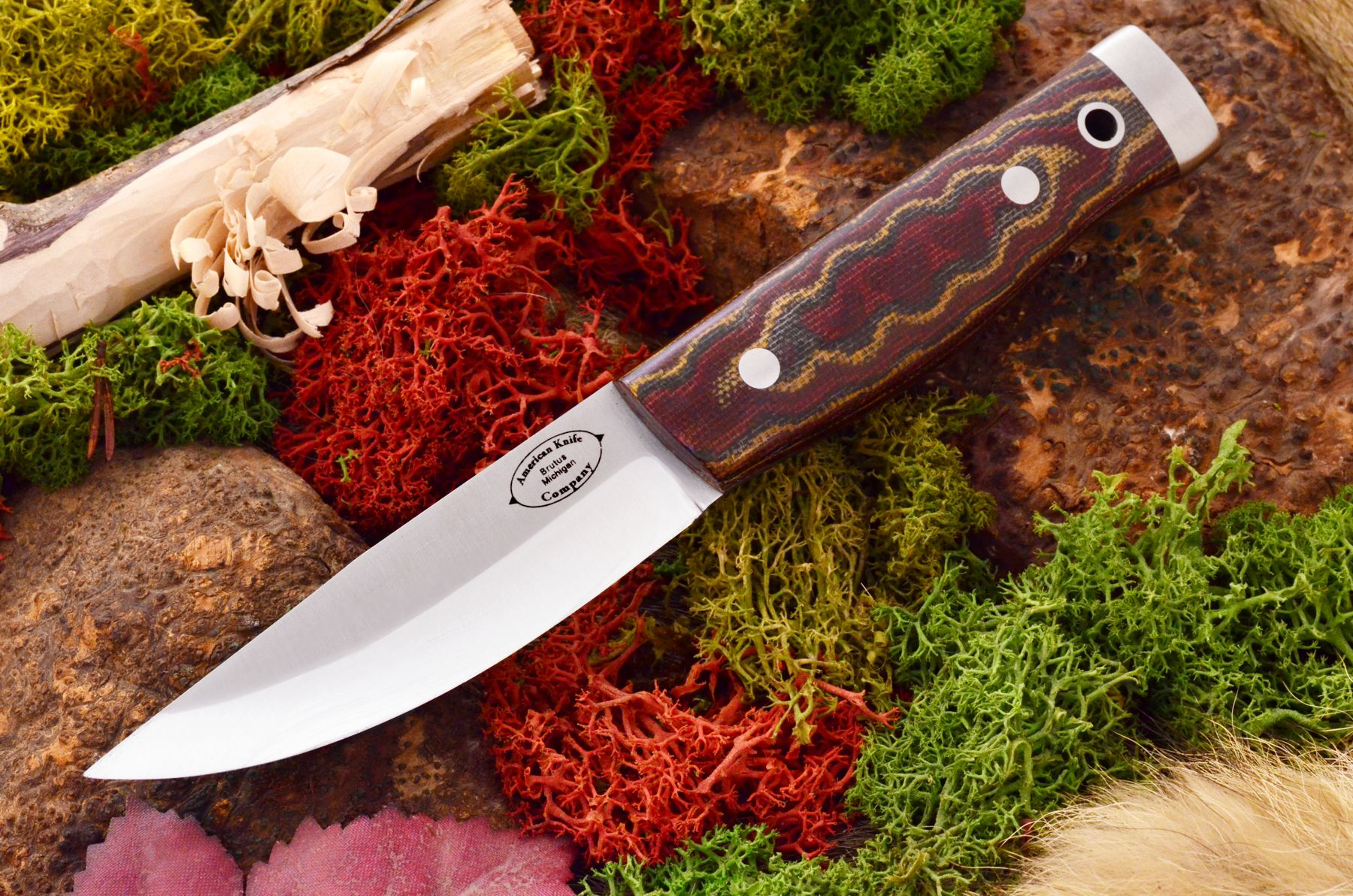 akc forest compact burgundy snakeskin canvas micarta matte 329.95