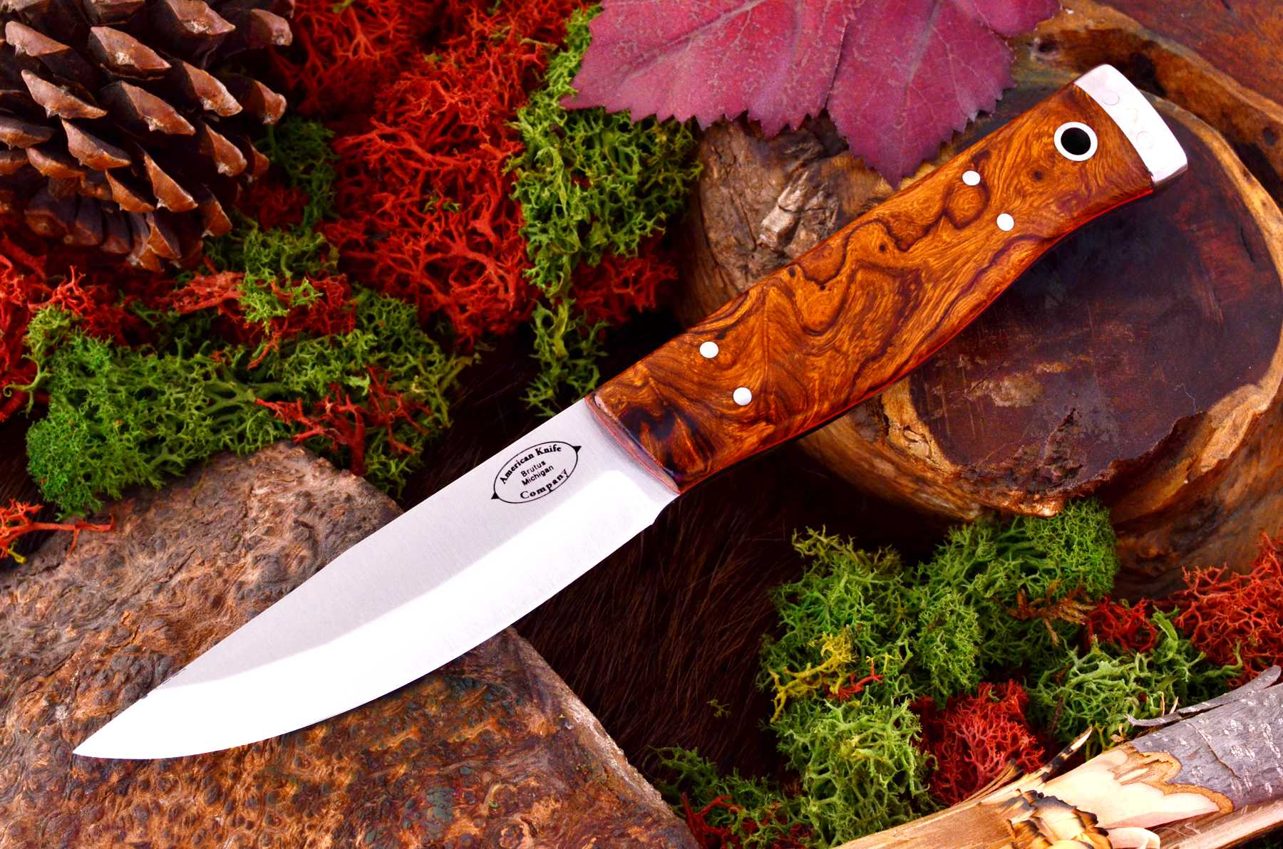 akc_forest_desert_ironwood_burl_red_liners_ksf_449_95